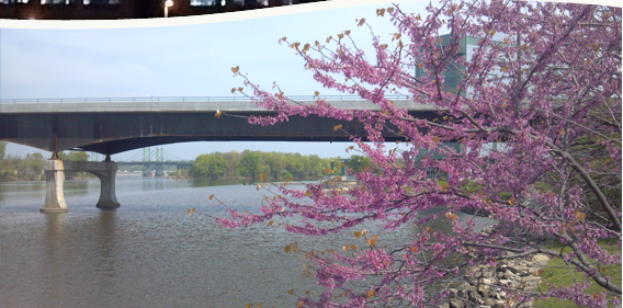Arsenal and I-74 Bridge in Spring.jpg
